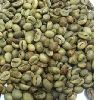 Robusta coffee beans ready for Export
